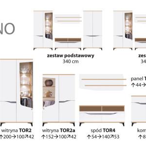 torino1